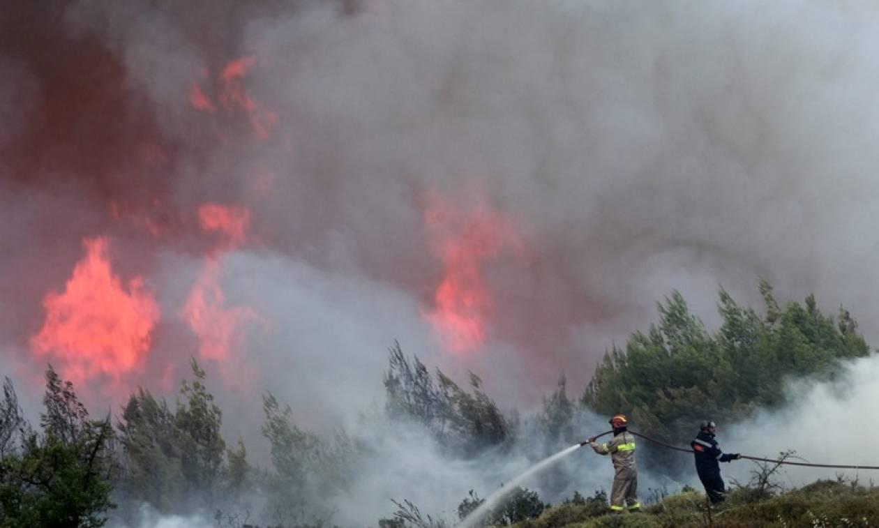 Σκουρλέτης για φωτιές: Επιχειρούμε με ό,τι διαθέσιμα έχουμε