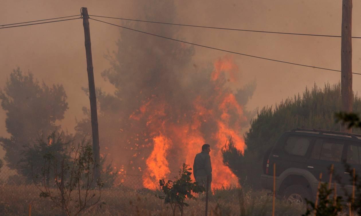 «Αδειάζει» την κυβέρνηση η Πυροσβεστική: Τα αίτια των πυρκαγιών διερευνώνται