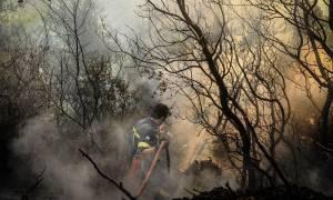 Φωτιά Live: Η Αττική φλέγεται – Εικόνες που κόβουν την ανάσα από τις φωτιές στην Ελλάδα