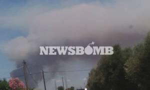 Φωτιά ΤΩΡΑ: Δύο τα πύρινα μέτωπα στην Αμαλιάδα