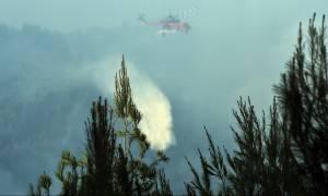 Φωτιά τώρα: Η ενημέρωση της Πυροσβεστικής για τις πυρκαγιές σε όλη την Ελλάδα