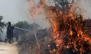Φωτιά Κάλαμος - Μαρτυρία σοκ: «Η φωτιά θα φτάσει στον Μαραθώνα» (vid)