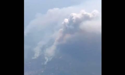 Φωτιά ΤΩΡΑ: Δραματικό βίντεο - Πώς φαίνονται από ψηλά οι πυρκαγιές στην Αττική (vid)