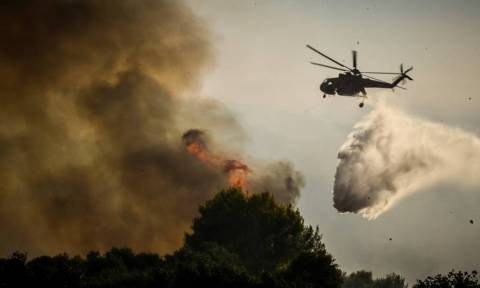 A total of fifty five wildfires reported in the last 24h in Greece