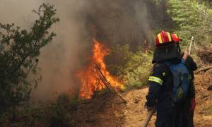 Φωτιά Κάλαμος: Κάτοικοι εγκαταλείπουν τα σπίτια τους στο Σαλαμίδι Αττικής