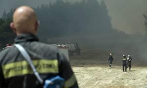 Φωτιά ΤΩΡΑ: Συγκινεί η φωτογραφία του πυροσβέστη που σώζει πουλάκια (pics)