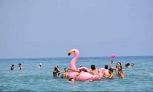 Χανιά: Περιπέτεια με... ροζ φλαμίγκο για παρέα λουόμενων
