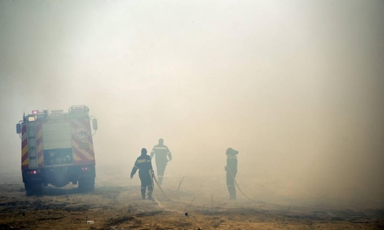 Φωτιά Live - Ηλεία: Συγκλονιστικές στιγμές – Οι κάτοικοι αρνούνται να εγκαταλείψουν τα σπίτια τους