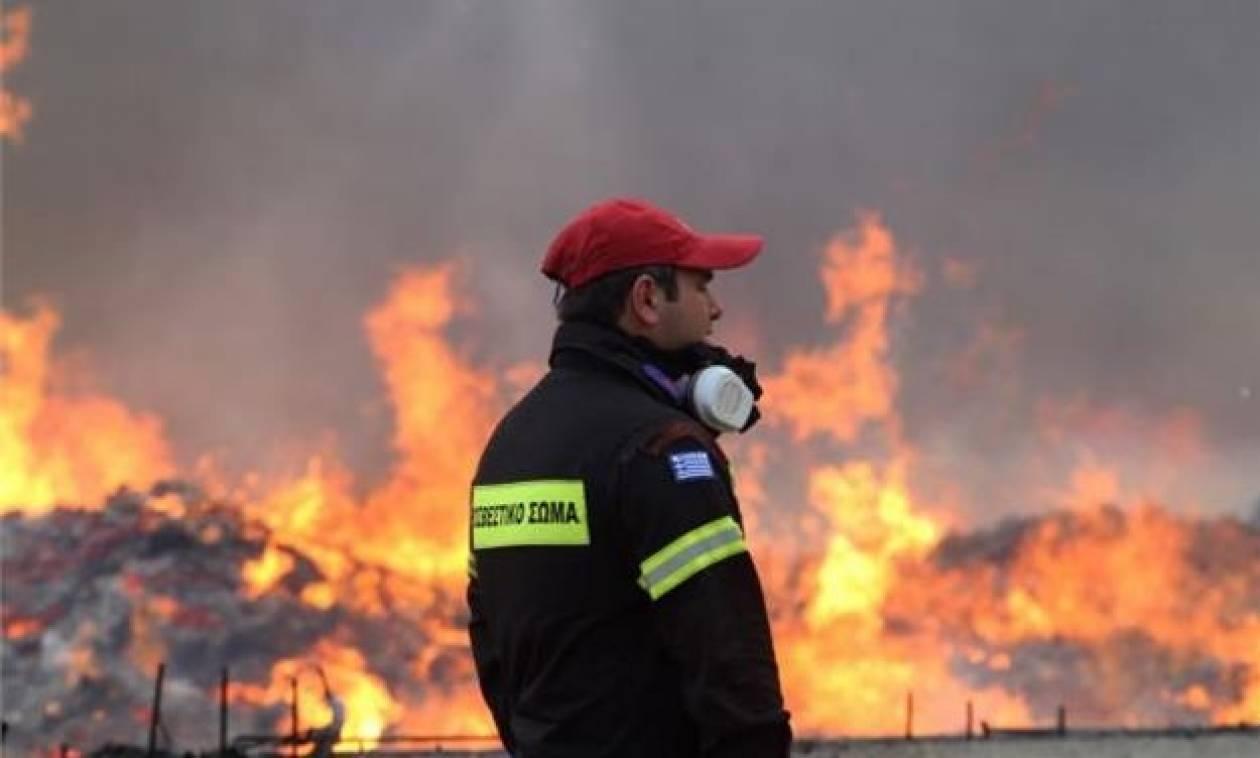 Φωτιά ΤΩΡΑ: Αίτημα για ευρωπαϊκή συνδρομή με εναέρια μέσα για την κατάσβεση των πυρκαγιών (vid)