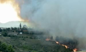 Φωτιά Live: 63χρονος θα έκαιγε την Πάρνηθα