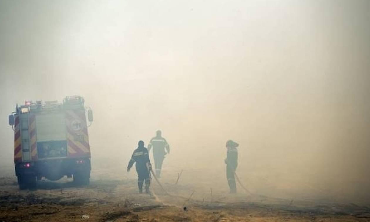 Φωτιά ΤΩΡΑ: Μάχη με το χρόνο να τεθούν υπό έλεγχο οι πυρκαγιές σε Ηλεία και Ζάκυνθο