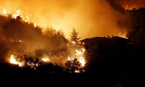 Греция обратилась к ЕС за помощью в борьбе с пожарами