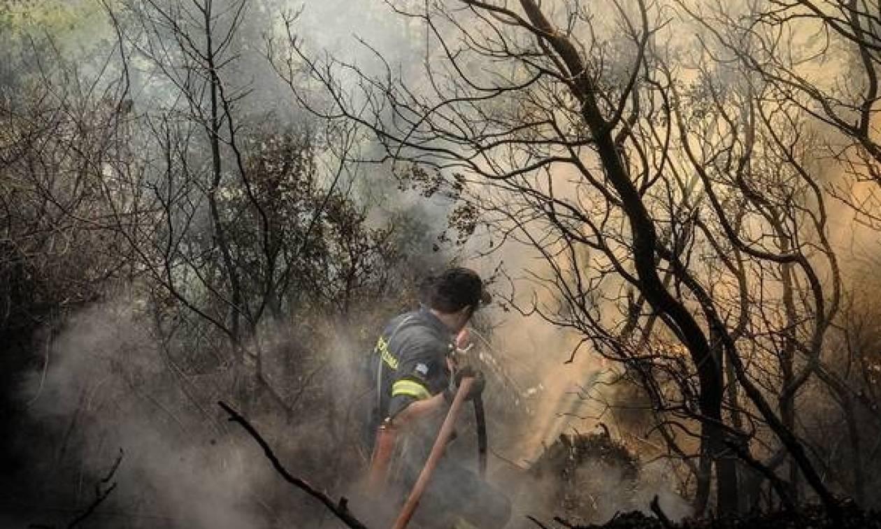 Φωτιά live: Δείτε που υπάρχουν ΤΩΡΑ πυρκαγιές στη χώρα