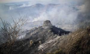Φωτιά LIVE - «Βόμβα» από επιστήμονες: Αλλάζουν τα πάντα - Τι θα συμβεί στην Αττική τα επόμενα χρόνια