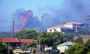 Φωτιά Ζάκυνθος: Κρανίου τόπος το νησί - Χιλιάδες στρέμματα έγιναν στάχτη (pics)