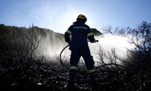 Φωτιά Ηλεία: Οριοθετήθηκε η πυρκαγιά στο Περιστέρι - Χωρίς ενεργό μέτωπο η πυρκαγιά