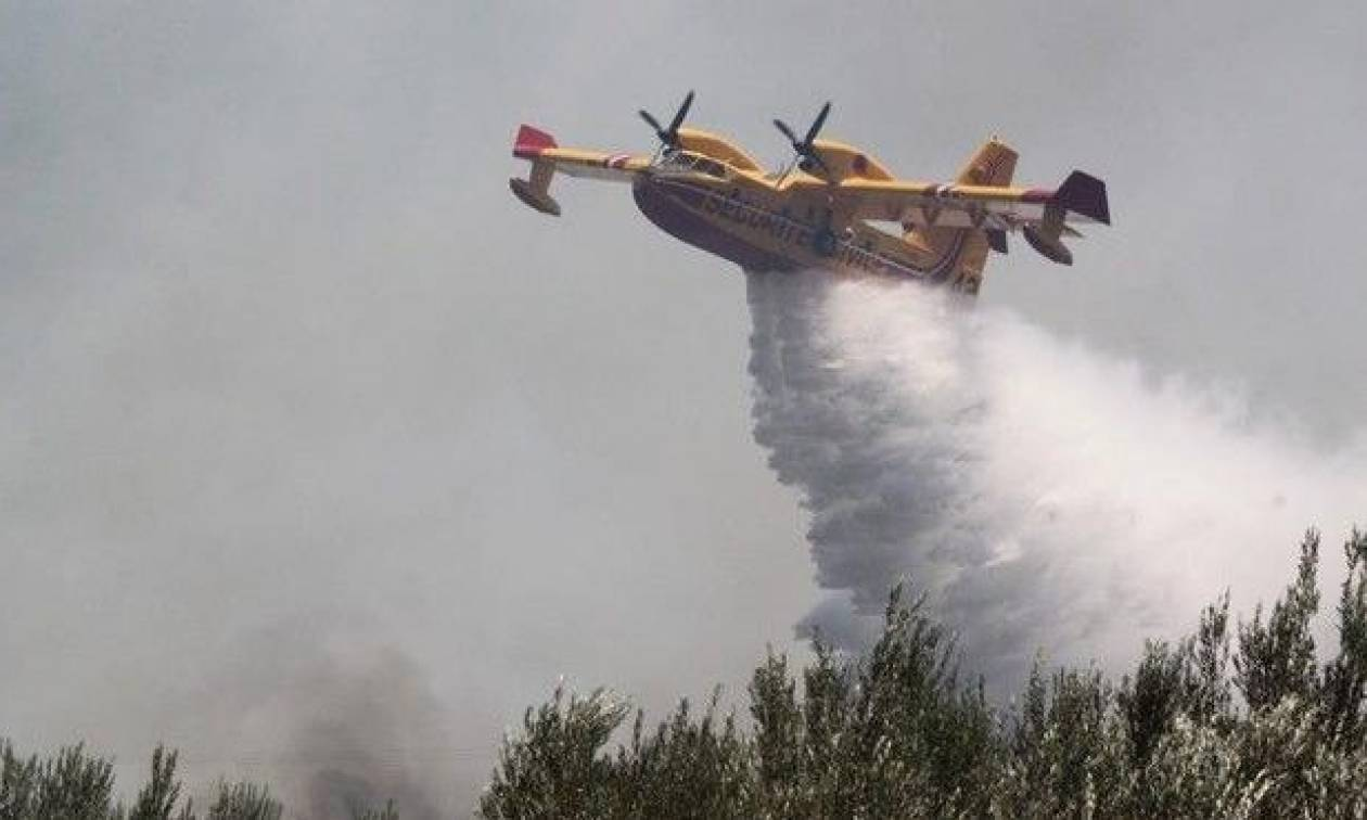 Φωτιά Ζάκυνθος: Σε ύφεση όλα τα πύρινα μέτωπα