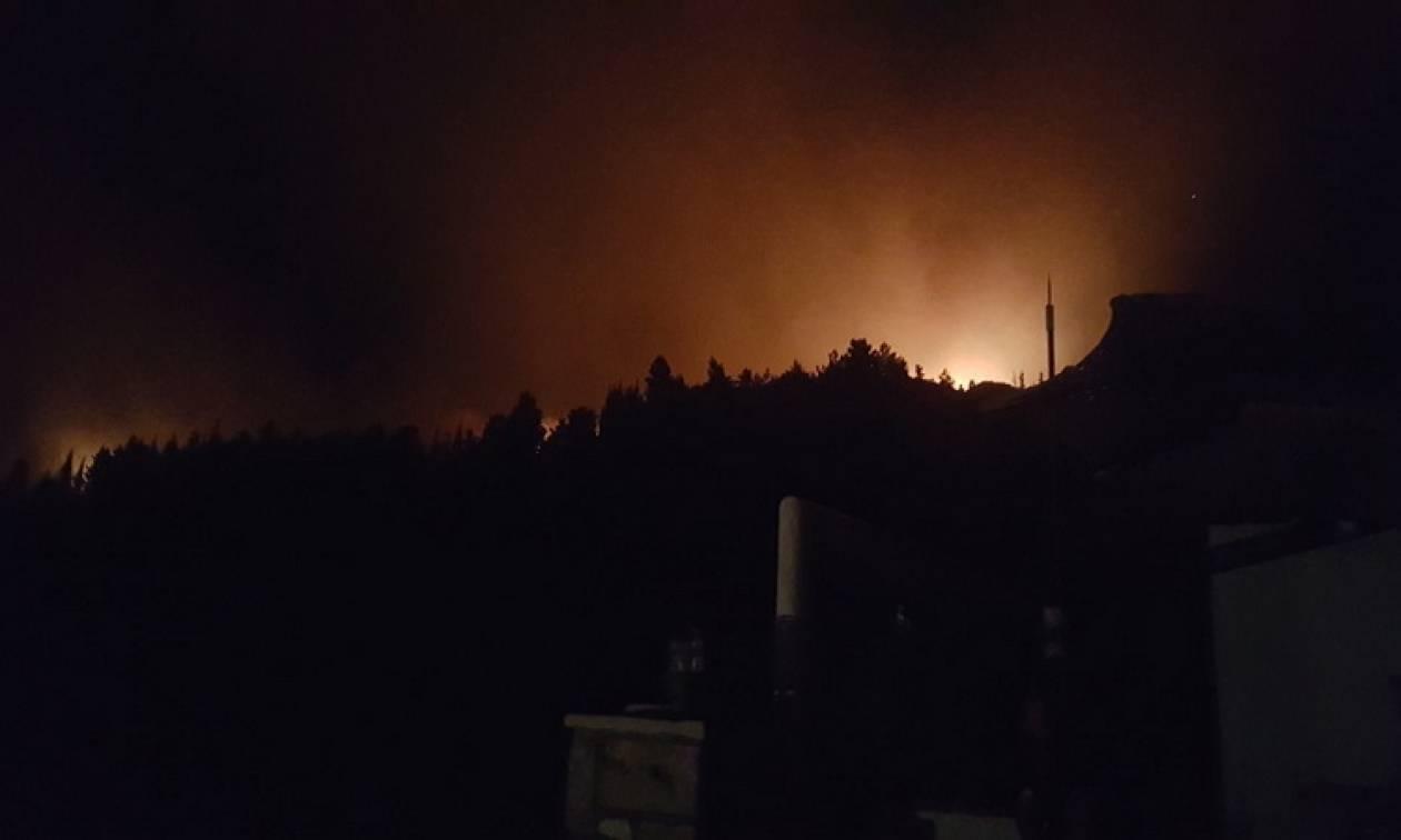 Φωτιά ΤΩΡΑ: Δραματική η κατάσταση στην Κεφαλονιά - Νέα μέτωπα σε Κατελειό και Ρατζακλί!