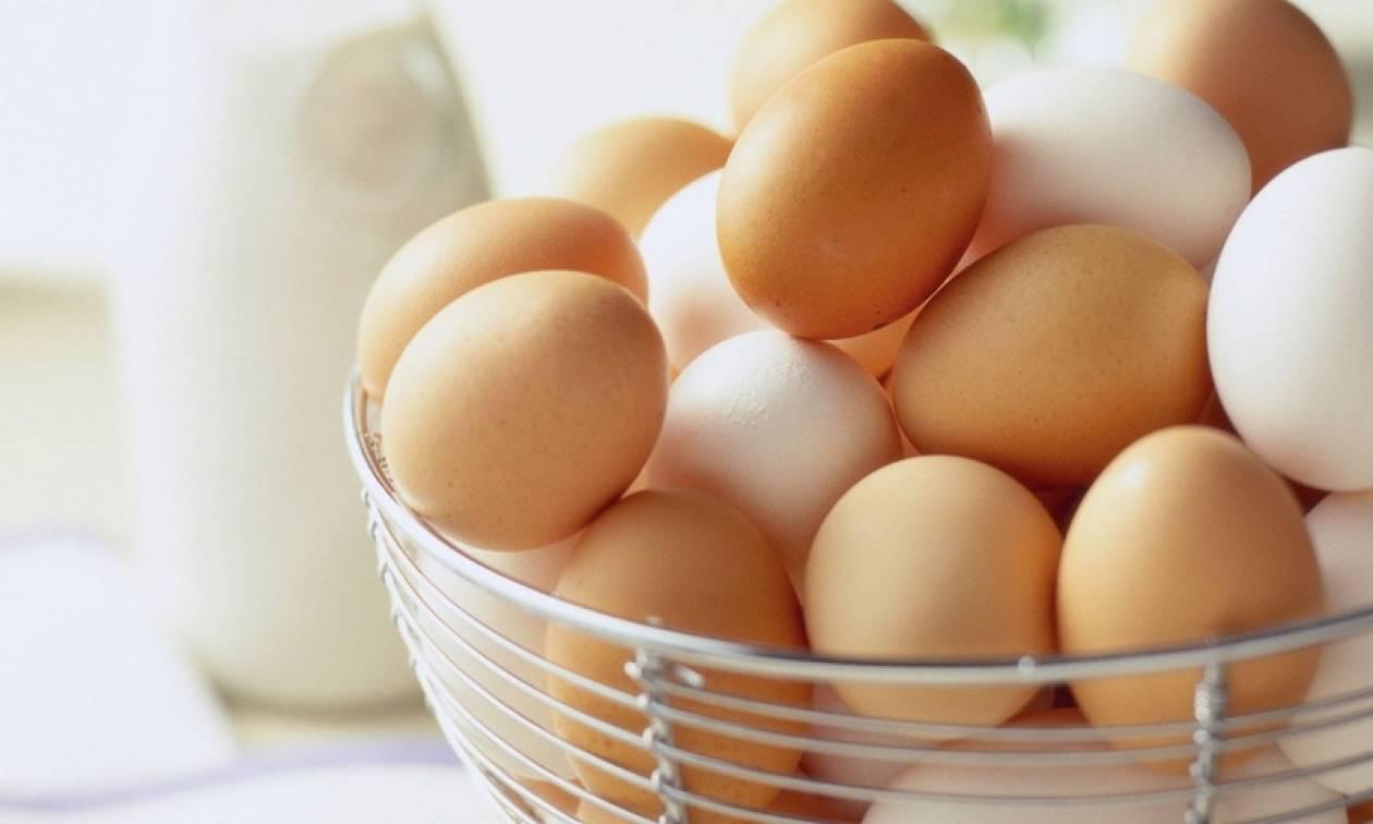 Διατροφικός εφιάλτης: Τεράστιες οι ποσότητες μολυσμένων αυγών που έχουν εισαχθεί στη Γερμανία
