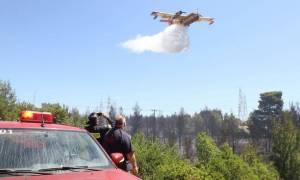 Πορτοκαλί συναγερμός! Ο χάρτης πρόβλεψης κινδύνου πυρκαγιάς για την Πέμπτη 17/8 (pics)