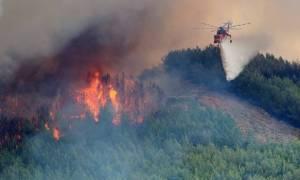 Φωτιά ΤΩΡΑ: Πυρκαγιά στην Πάργα – Κινδύνεψε πυροσβέστης στα Γιάννενα