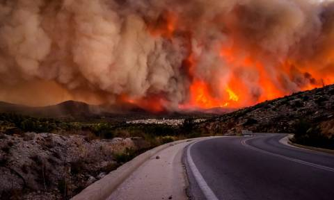 Government cabinet announces relief measures for those affected by wildfires