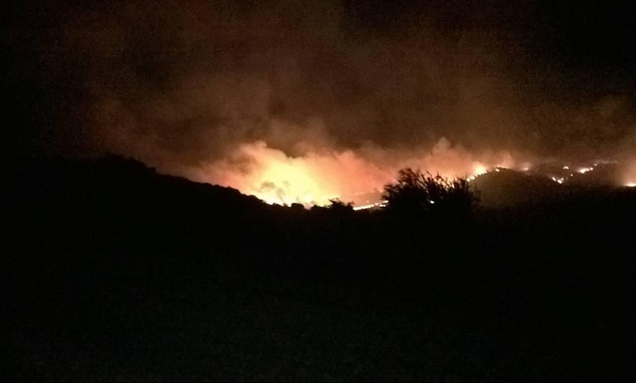 Φωτιά ΤΩΡΑ: Στις φλόγες ξανά η Κεφαλονιά - Πυρκαγιές σε Καραβάδο και Πάστρα
