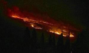Φωτιά ΤΩΡΑ: Νέο μέτωπο στην Κεφαλονιά - Στις φλόγες ο Αλειμματάς