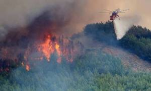 Φωτιά ΤΩΡΑ: Ο «εφιάλτης» επέστρεψε στην Κεφαλονιά – Δύο πύρινα μέτωπα