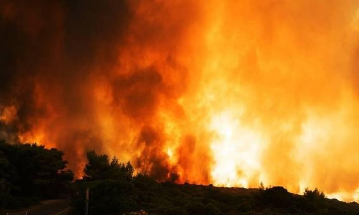 Φωτιά Κεφαλονιά - Η Αστυνομία ενημερώνει: Σε αυτό τον αριθμό να καλείτε αν χρειαστείτε βοήθεια