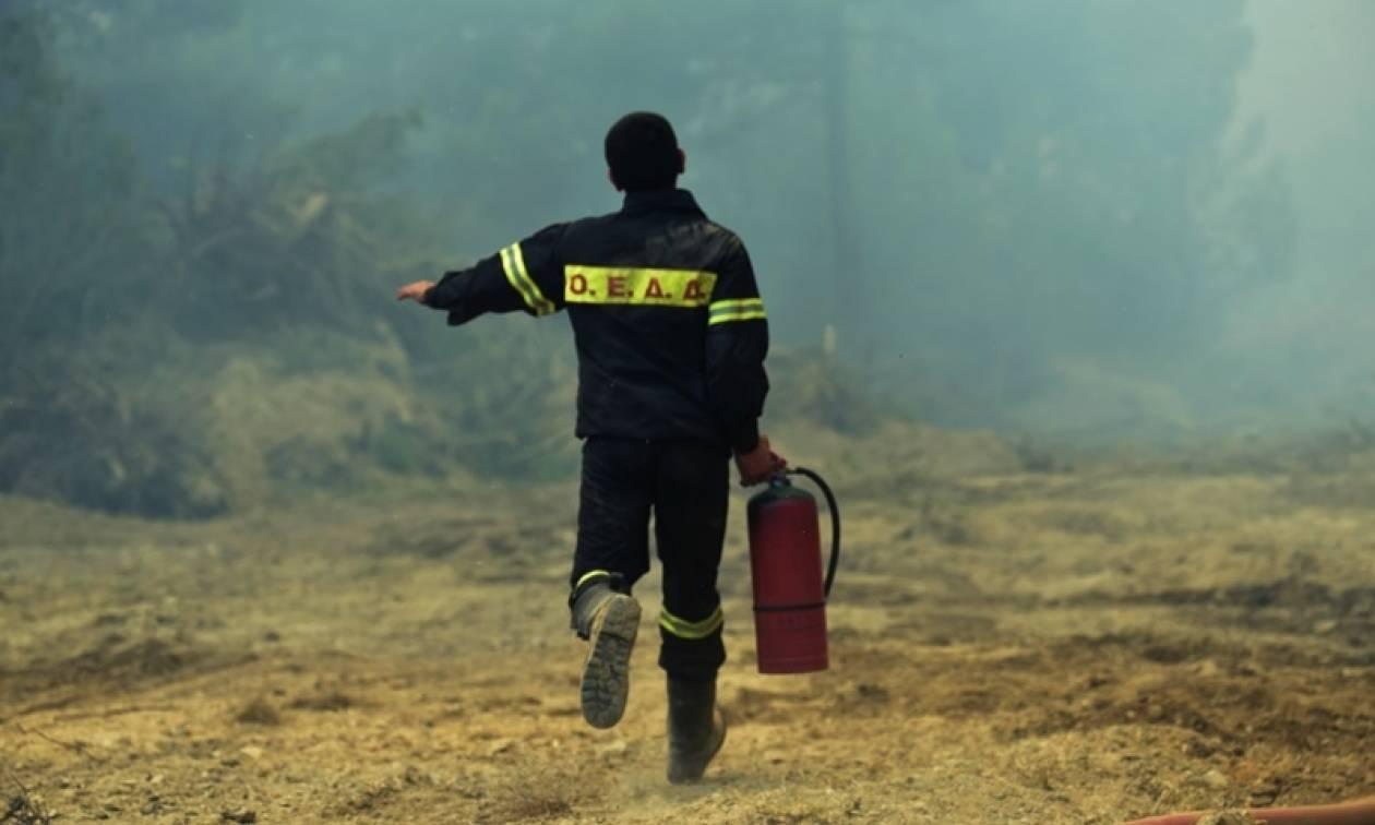 Φωτιά ΤΩΡΑ: Υψηλός ο κίνδυνος εκδήλωσης πυρκαγιάς το Σάββατο (19/8)