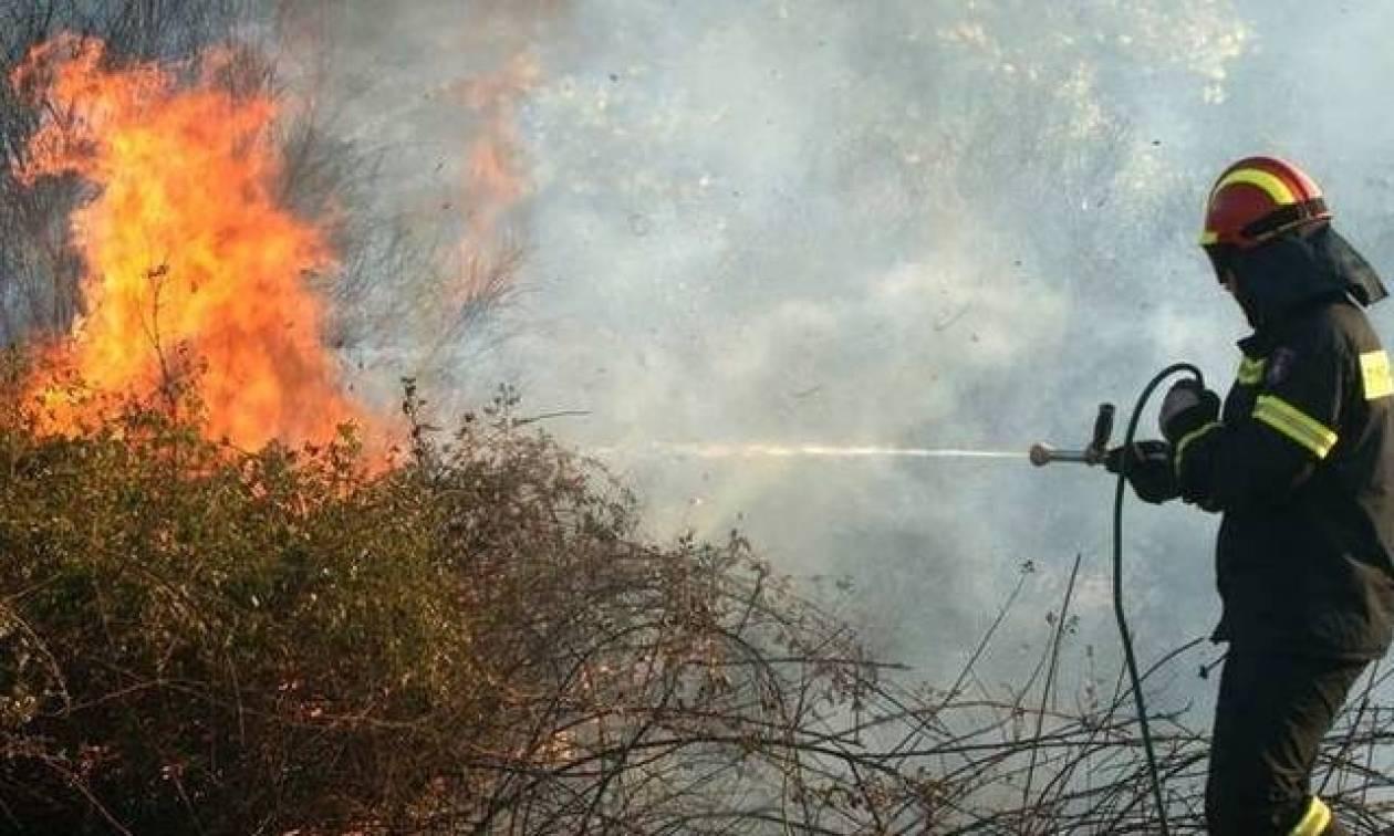 Φωτιά ΤΩΡΑ στην Ιεράπετρα