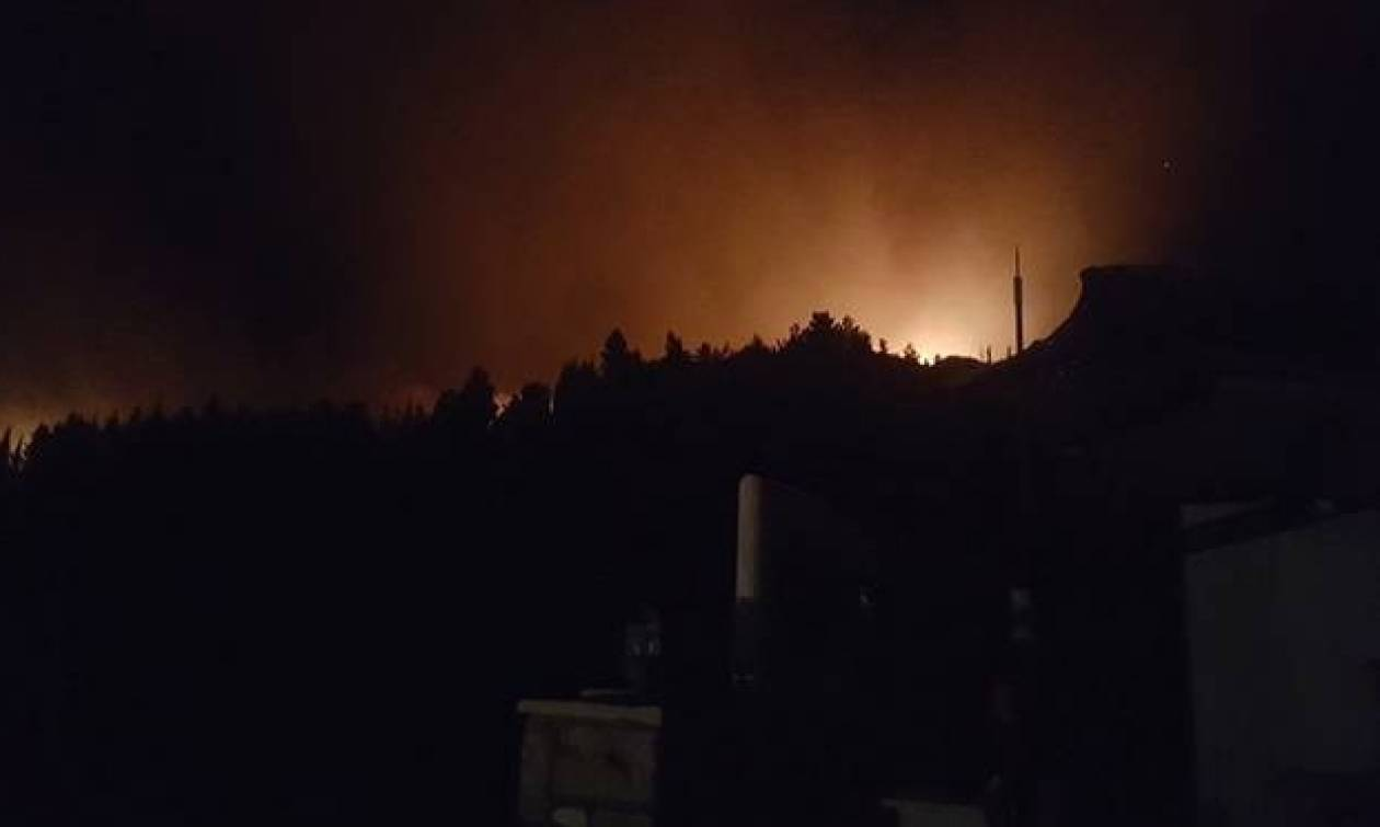 Πάτρα: Φωτιά ΤΩΡΑ κοντά στο αεροδρόμιο Αράξου