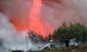 Ηλεία: Μαίνεται η πυρκαγιά στα Ροδινά