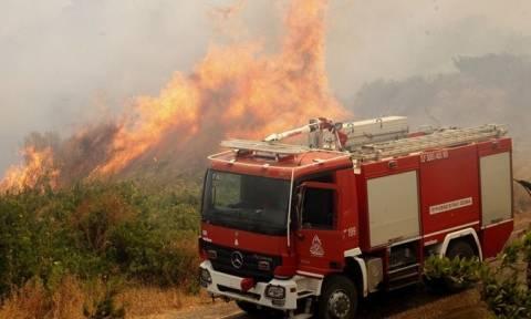 Φωτιά Κέρκυρα: Σε εξέλιξη νέα πυρκαγιά στα νοτιοδυτικά του νησιού