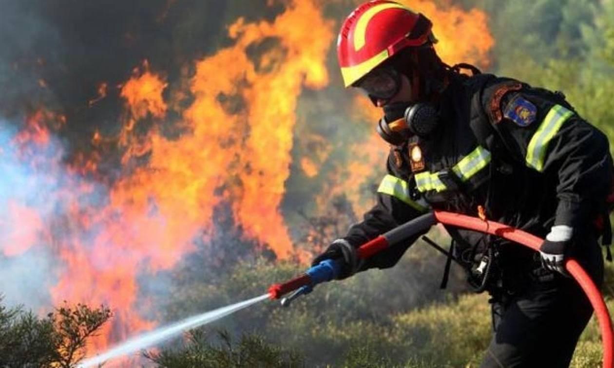 Φωτιά κοντά σε σπίτια στην Βάρη (pics&vid)