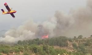 Μαίνεται η φωτιά στο Σοφικό Κορινθίας