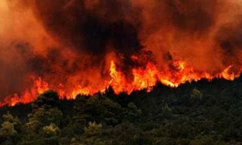 Μεγάλη πυρκαγιά στην Κέρκυρα - Κινδυνεύουν ξενοδοχεία