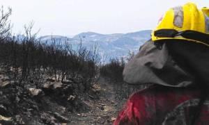 Ο Ερυθρός Σταυρός στην κατάσβεση της πυρκαγιάς στη Ζαχάρω