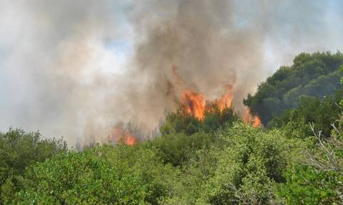 Large fire breaks out in southern Zakynthos