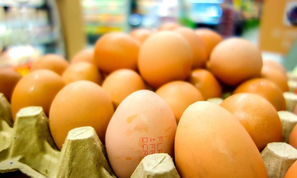 «Ασύλληπτο» το κόστος της ζημιάς από το σκάνδαλο με τα μολυσμένα αυγά στην Ολλανδία (Infographic)