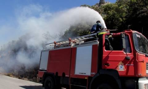 Πολύ υψηλός σήμερα ο κίνδυνος πυρκαγιάς - Τριάντα έξι φωτιές το τελευταίο 24ωρο