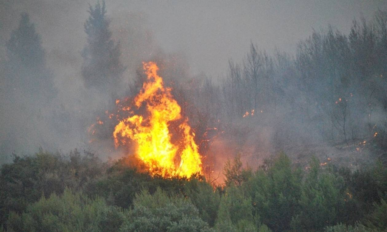 Φωτιά στη Ζάκυνθο: Θρίλερ με τουρίστες - Τους κύκλωσε η φωτιά