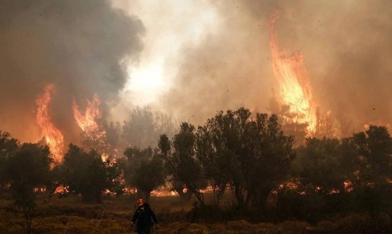 ΠΡΟΣΟΧΗ! Αυτές είναι οι περιοχές που κινδυνεύουν για πυρκαγιά την Κυριακή 27 Αυγούστου