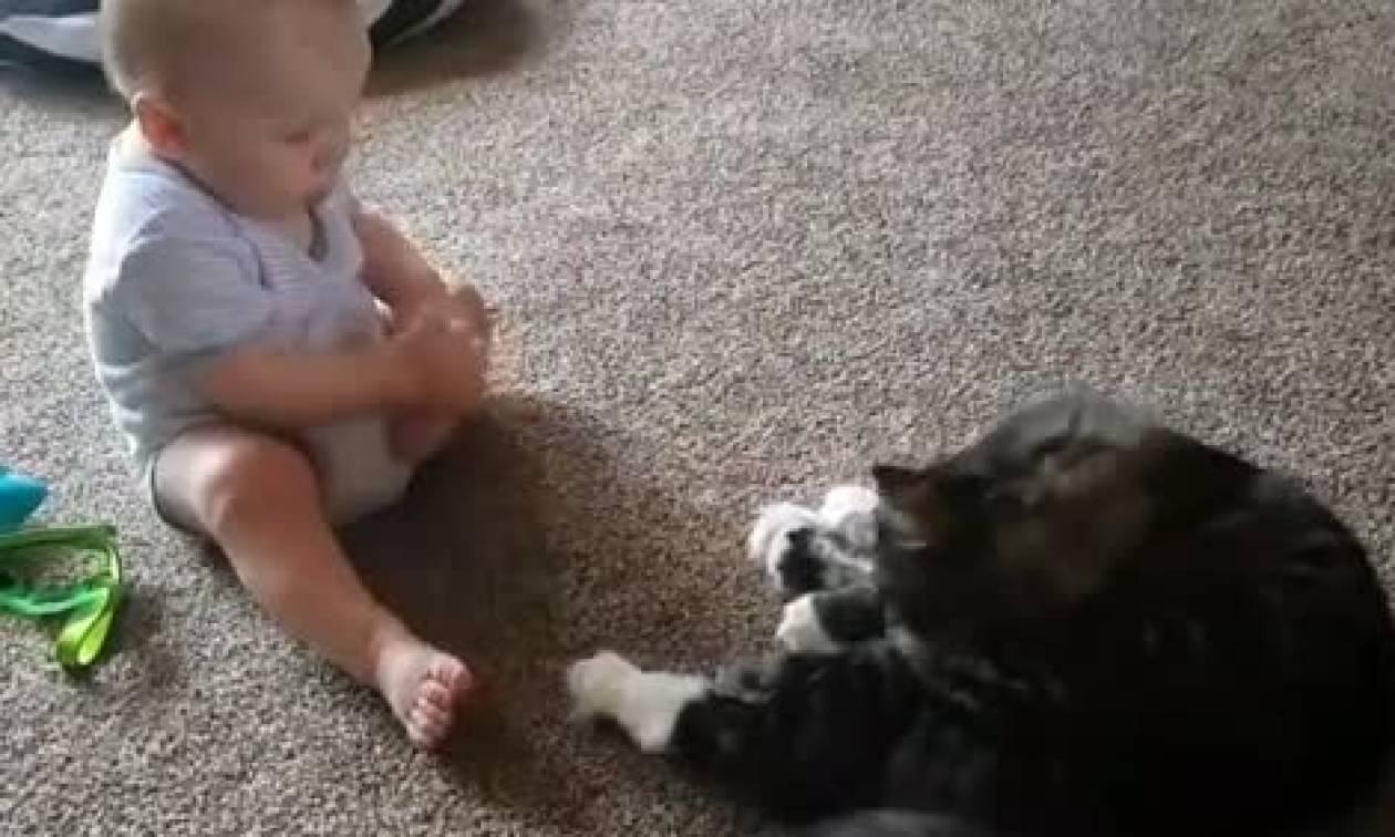 Φοβερό βίντεο! Η γάτα γλύφεται κι ο μπέμπης προσπαθεί να τη μιμηθεί (video)
