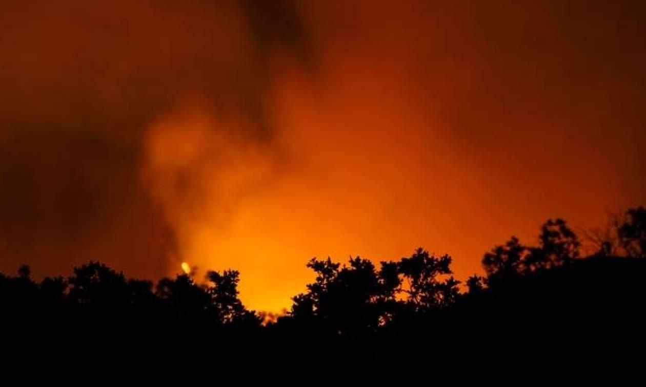 Φωτιά ΤΩΡΑ: Πύρινο μέτωπο κοντά στο χωριό Αγορά της Θεσπρωτίας (pic & vid)