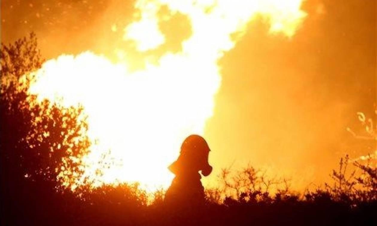 Φωτιά ΤΩΡΑ – Ζάκυνθος: Καίγονται οι Μαριές – Μάχη με τις φλόγες για να σωθεί το χωριό