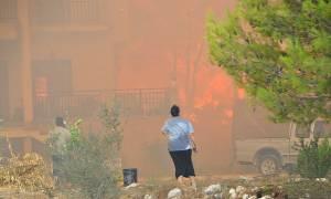 Φωτιά ΤΩΡΑ: Βιβλική η καταστροφή στη Ζάκυνθο - Ποια η εικόνα της πυρκαγιάς σήμερα (pics)