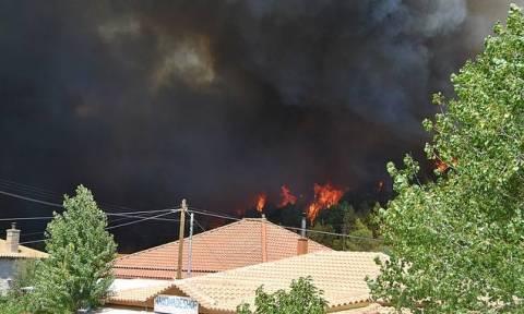 Пожар на острове Закинфос, ситуация вышла из-под контроля