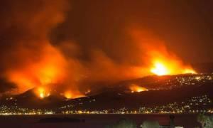 Πυρκαγιά Ωρωπός: Σε εξέλιξη η καταγραφή των ζημιών